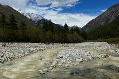 Mętna woda halna rzeka Zdjęcie Stock