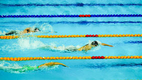 200m Vrij slag PanPacs 2014 Stock Afbeelding