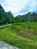 Młyn, trawa, droga, niebo i staw, fotografia stock
