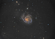 M101轮转焰火星系 库存图片