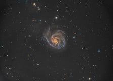 M101 Pinwheel Galaxy Stock Images
