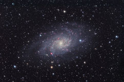 M33 Galaxy in Triangulum constellation. Stock Photography
