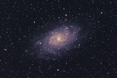 M33 Triangulum Galaxy Royalty Free Stock Photography