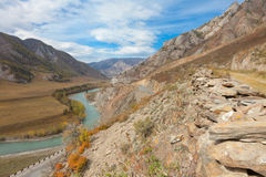 M52 road from Siberia to Mongolia Royalty Free Stock Photos