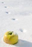 Maçã amarela na neve fotografia de stock