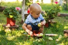 Maçã da colheita do rapaz pequeno no jardim do fruto Fotos de Stock Royalty Free