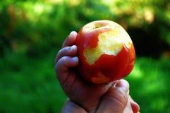 maçã da mordida em pouca mão fotografia de stock royalty free