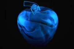 Maçã de vidro imagem de stock