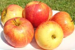 Maçã do fruto no close up da placa Fotos de Stock