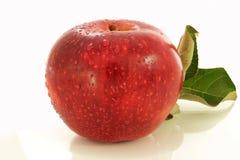 Maçã do fruto no fundo branco Fotos de Stock