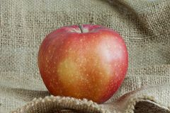 Maçã vermelha bonita no saco da lona Fotografia de Stock Royalty Free