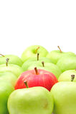 Maçã vermelha em maçãs verdes Fotos de Stock Royalty Free