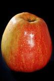 A maçã vermelha grande Foto de Stock Royalty Free