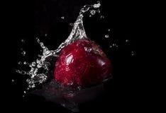 Maçã vermelha que cai na água com respingo no fundo preto fotografia de stock