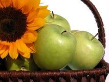 maçãs Imagens de Stock