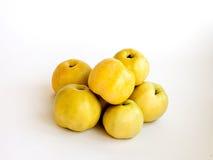 Maçãs amarelas do outono Imagem de Stock Royalty Free