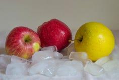 Maçãs com gelo Foto de Stock Royalty Free