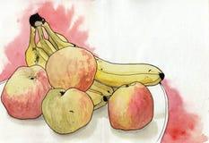 Maçãs da aquarela, banana no fundo branco Pintura da mão no papel ilustração do vetor