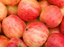 Maçãs da fruta frescas Fotografia de Stock