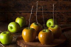 Maçãs de caramelo verdes caseiros imagens de stock