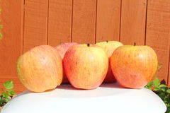 Maçãs do fruto no fundo de madeira Imagens de Stock