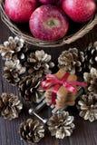 Maçãs do Natal Fotografia de Stock Royalty Free