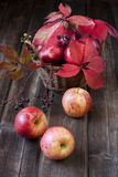 Maçãs do outono com as folhas na placa de madeira Imagens de Stock Royalty Free