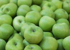 Maçãs do verde do montão Foco seletivo da colheita da queda foto de stock royalty free