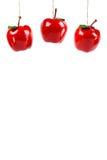 Maçãs do Xmas Imagem de Stock