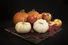 Maçãs e Autumn Leaves das abóboras Foto de Stock Royalty Free