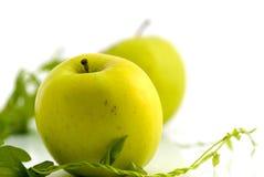 Maçãs e folhas frescas do verde fotografia de stock royalty free