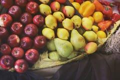 Maçãs e peras da colheita imagens de stock