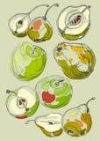 Maçãs e peras tiradas do fruto mão ajustada Foto de Stock Royalty Free