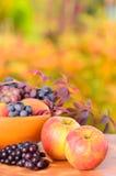 Maçãs e uva do outono Imagem de Stock