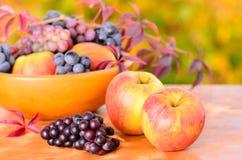 Maçãs e uva do outono Foto de Stock Royalty Free