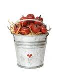 Maçãs em um balde imagem de stock royalty free