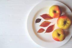Maçãs em uma placa branca em uma tabela de madeira Maçãs amadurecidas Decoração das folhas de outono Imagens de Stock