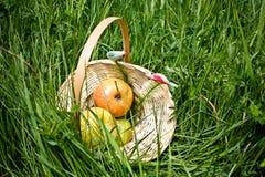 Maçãs, maçãs na cesta, piquenique Fotografia de Stock Royalty Free