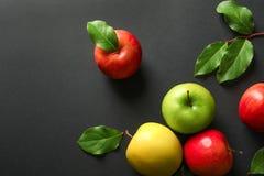 Maçãs maduras com as folhas verdes no fundo escuro Fotografia de Stock Royalty Free