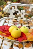 Maçãs maduras, verdes no jardim, tempo do outono Fotos de Stock