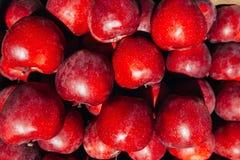 Maçãs maduras vermelhas muito fundo Close-up Imagens de Stock Royalty Free
