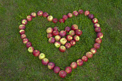 Maçãs na forma de um coração Imagens de Stock Royalty Free