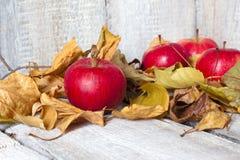 Maçãs na tabela de madeira com as folhas de outono no fundo de madeira Fotos de Stock