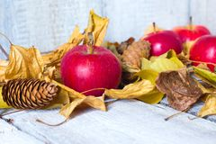 Maçãs na tabela de madeira com as folhas de outono no fundo de madeira branco Imagens de Stock Royalty Free