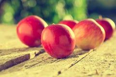Maçãs na tabela de madeira sobre o fundo do verão Fotografia de Stock