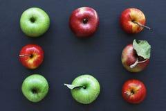 Maçãs no fundo escuro, quadro das maçãs maduras Maçãs verdes e vermelhas imagens de stock