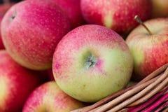 Maçãs orgânicas em uma cesta ao ar livre Fotos de Stock Royalty Free