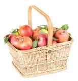 Maçãs orgânicas saudáveis na cesta Foto de Stock