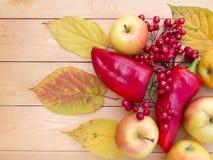 Maçãs, pimentas de sino, bagas vermelhas do viburnum e folhas de outono Imagens de Stock Royalty Free