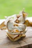 Maçãs secadas deliciosas Foto de Stock Royalty Free